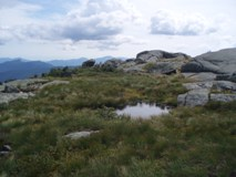 Scenic: Mike McLean - Algonquin Summit